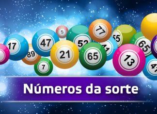 bingo e os números